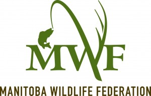 mwf_logo_vert_rgb-300x191.jpg