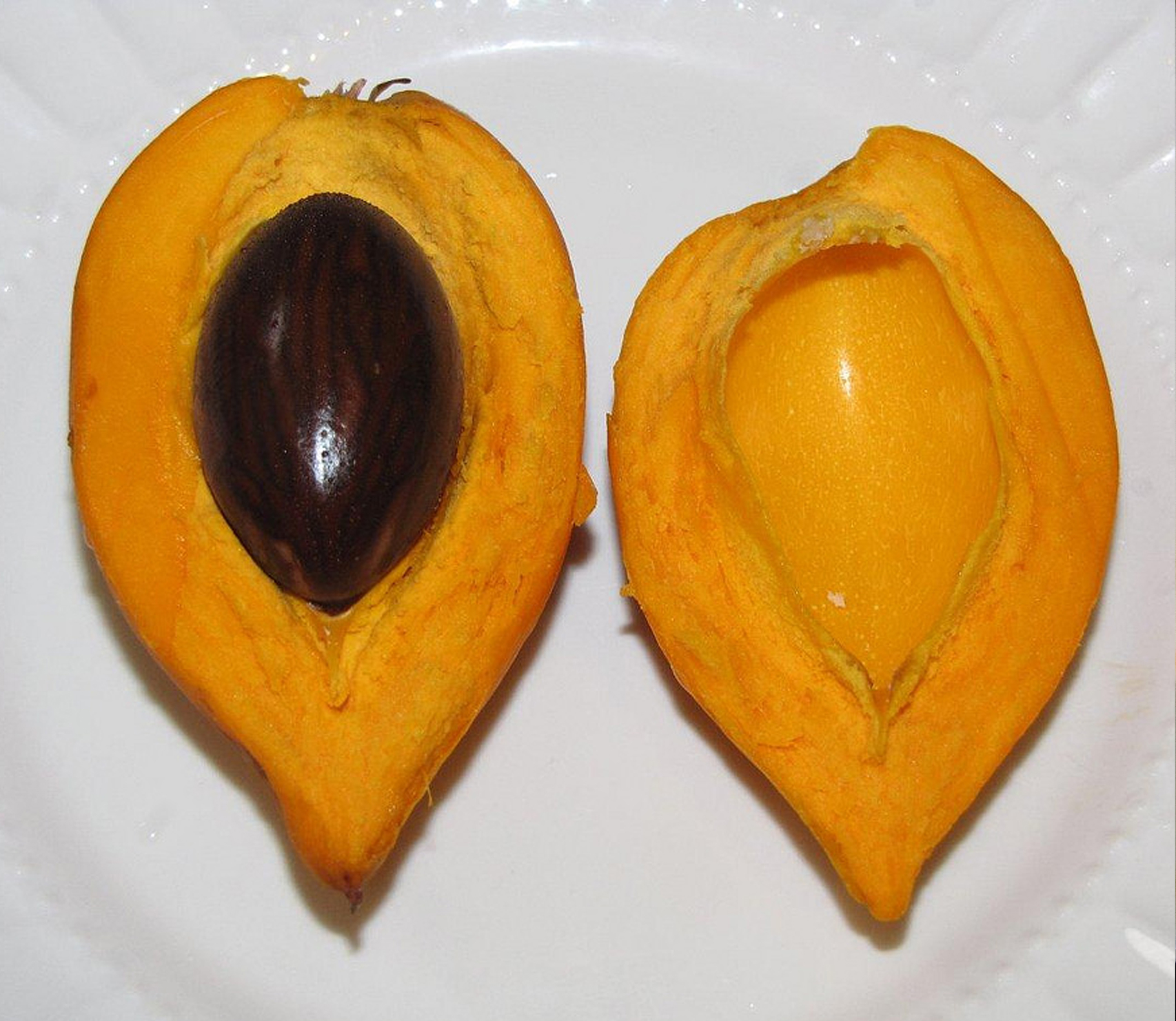 Egg_Fruit-1.jpg