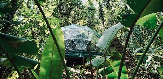 Geodesic Dome -
