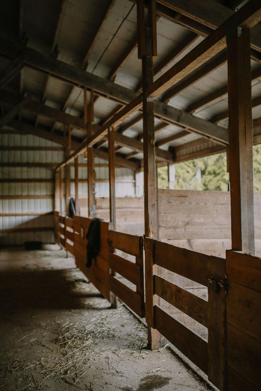 Sunset Lake Horse Barn 3
