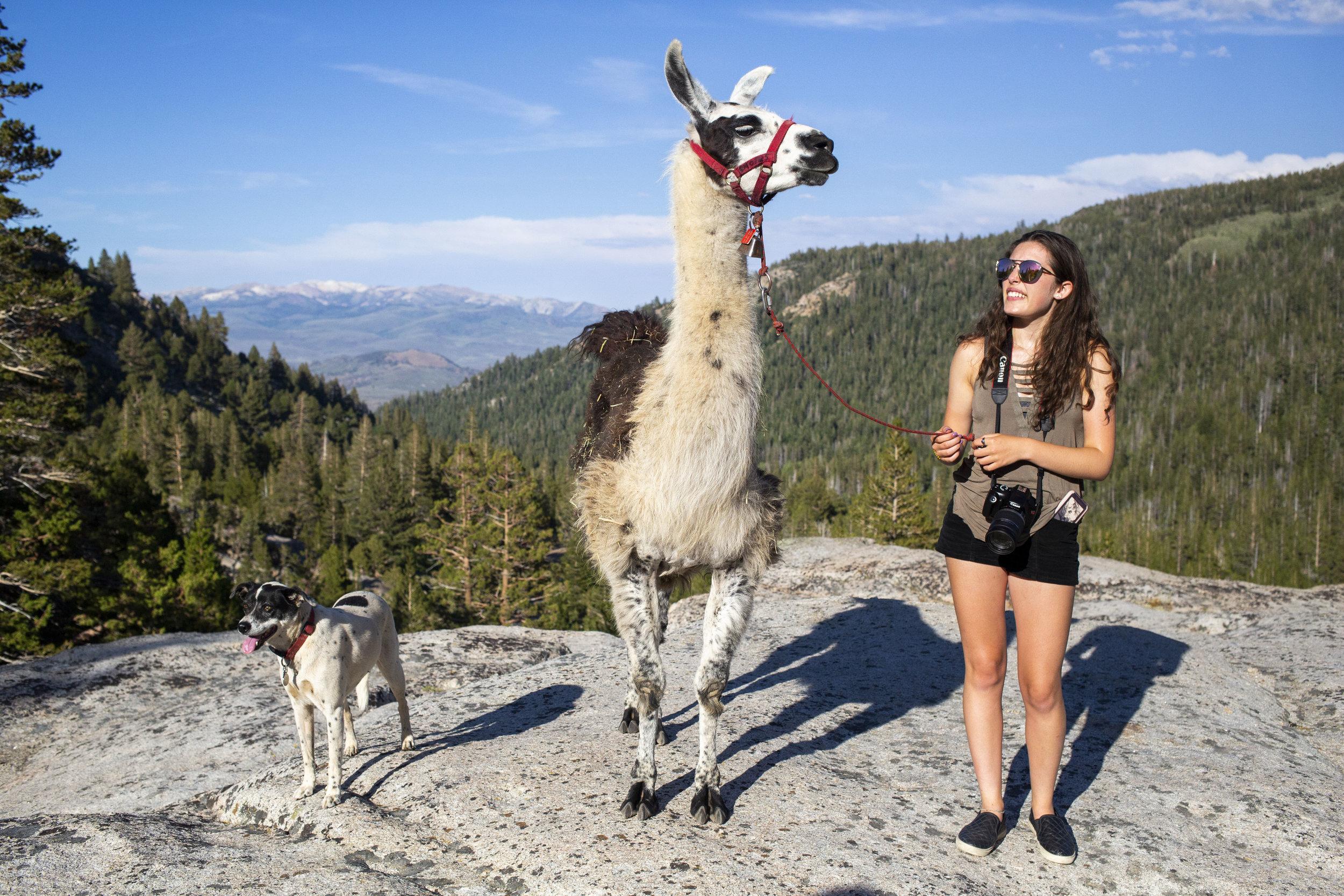 NGSE_Yosemite2018_AnnaLynch_5093.jpg