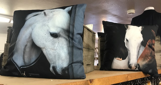 fb horse pillows2.jpg