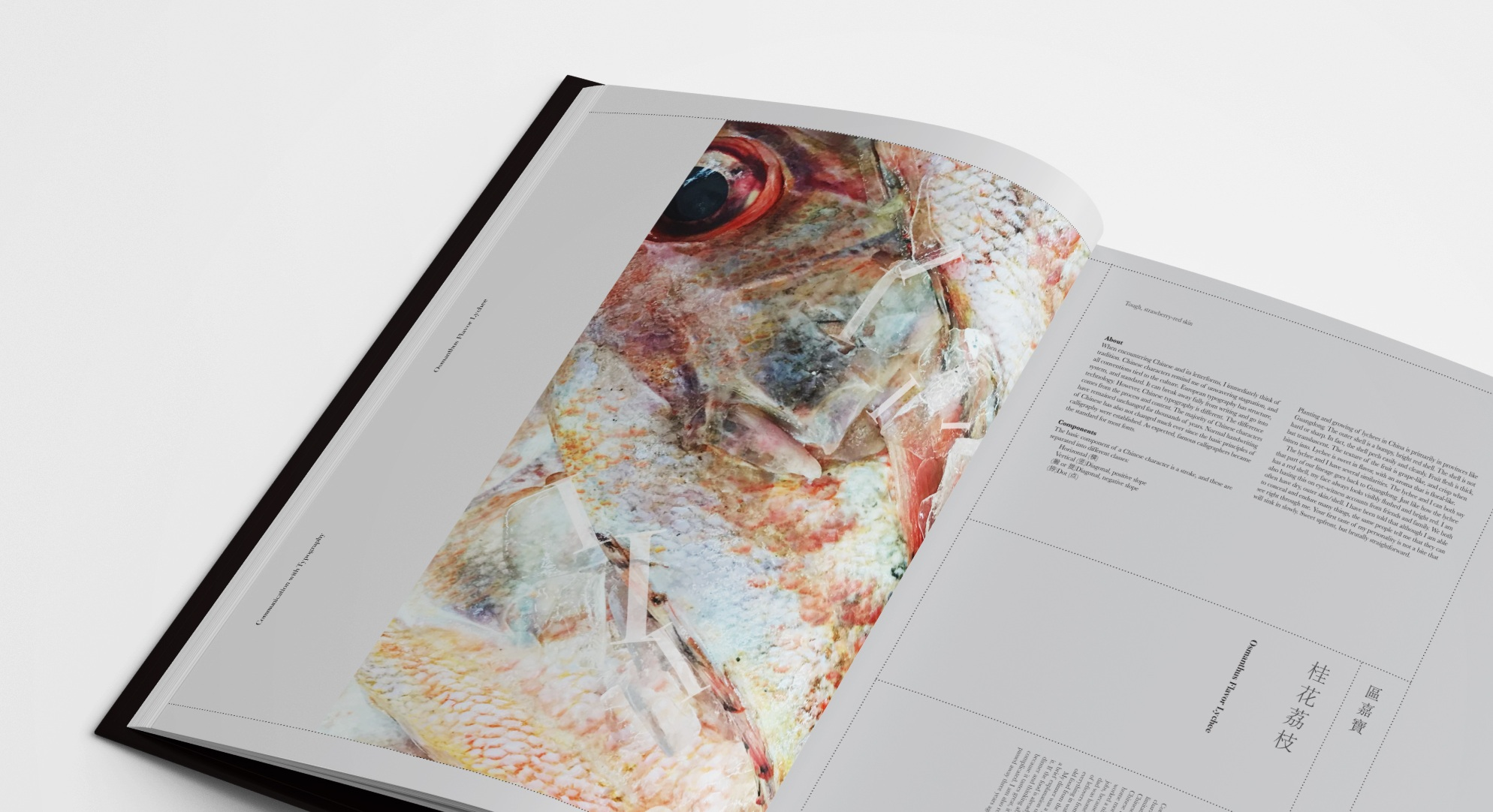 BookInterior3.jpg