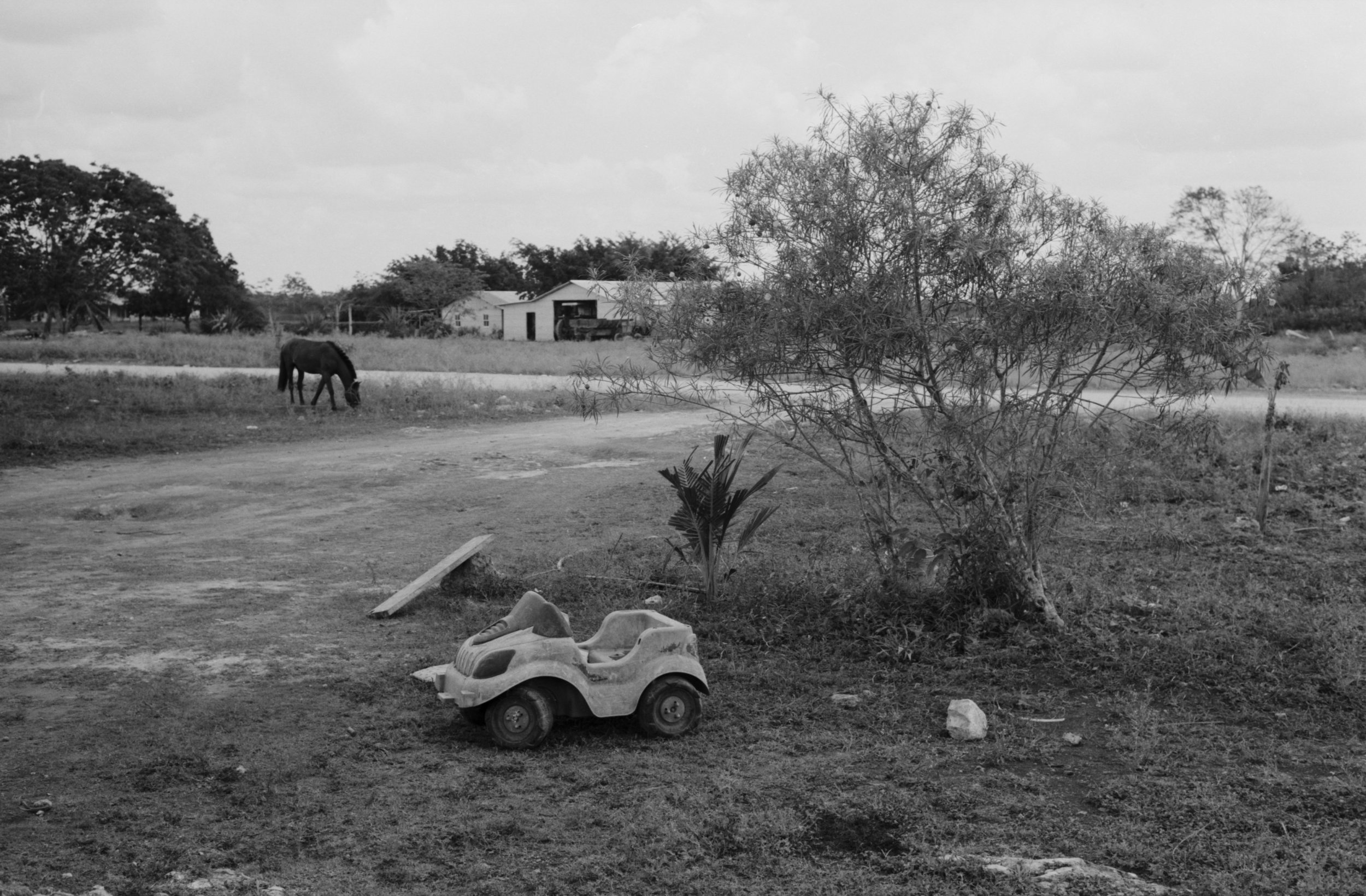 Myplayaphotographer Bacalar Tulum Menonite Colony web004.jpg