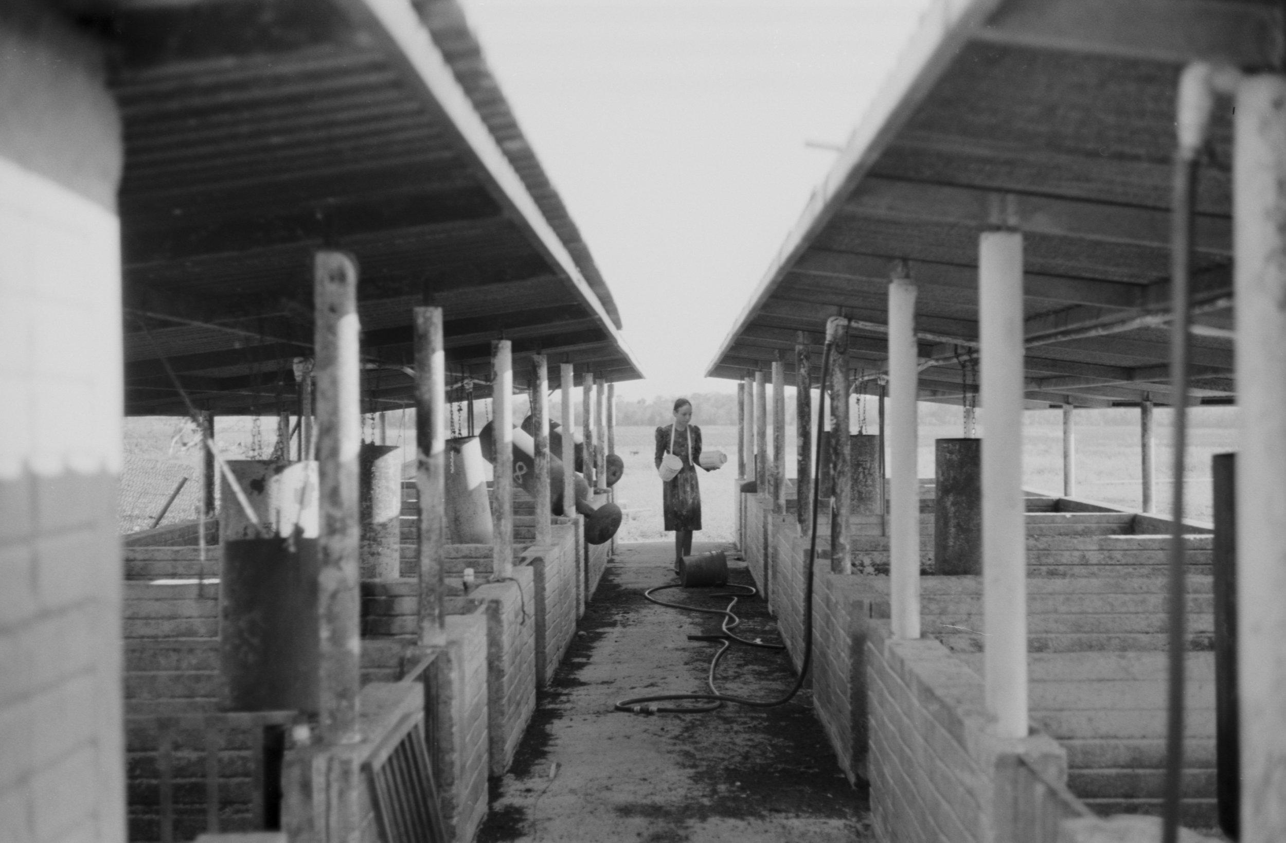 Myplayaphotographer Bacalar Tulum Menonite Colony web009.jpg