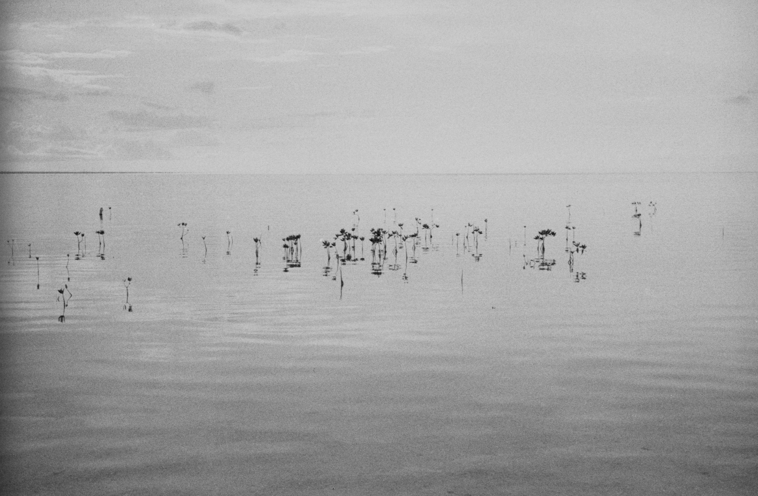 websized Analog Photographer living in Playa del Carmen Tulum Traveling the World028.jpg