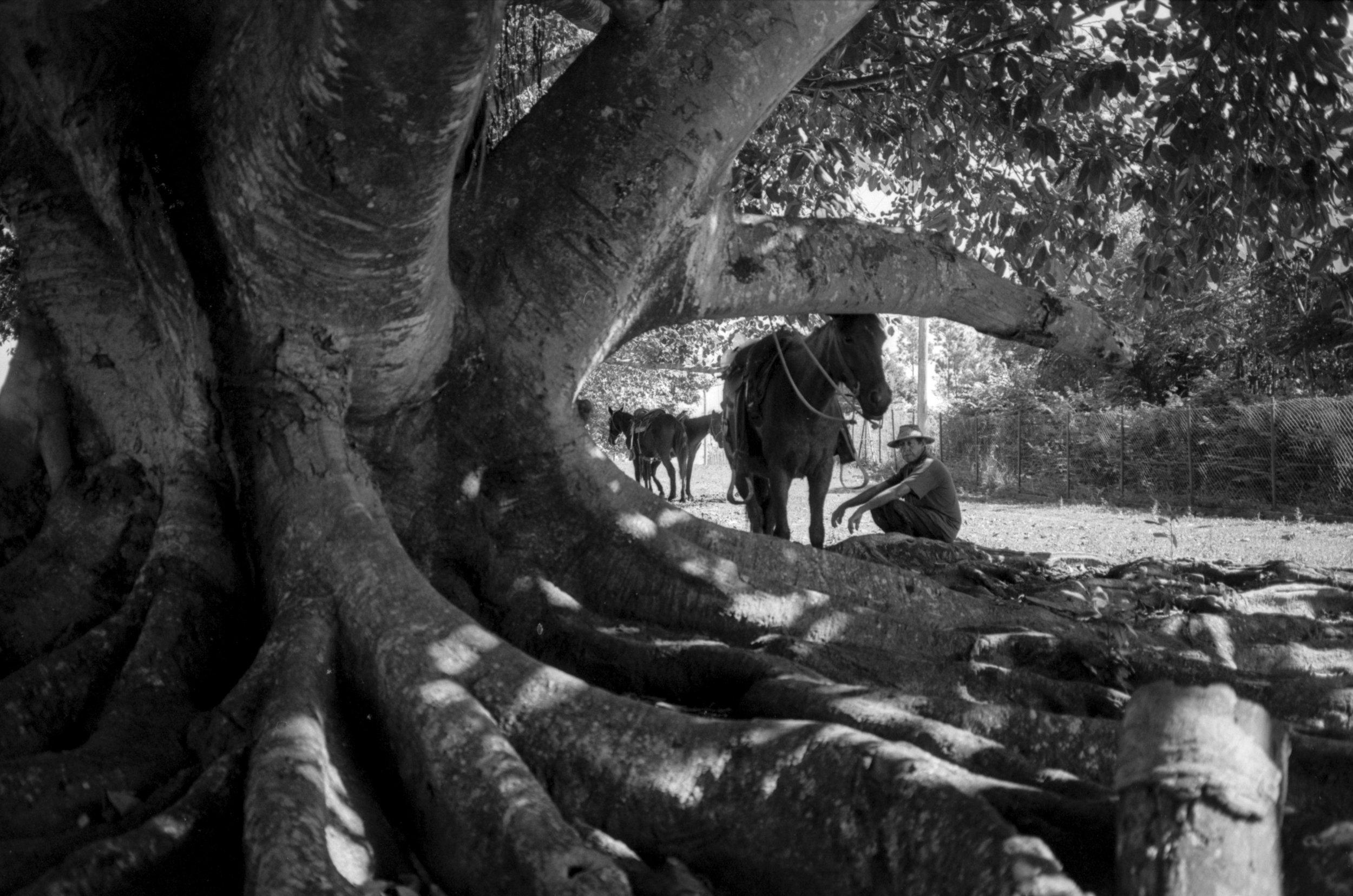 websized Analog Photographer living in Playa del Carmen Tulum Traveling the World050.jpg
