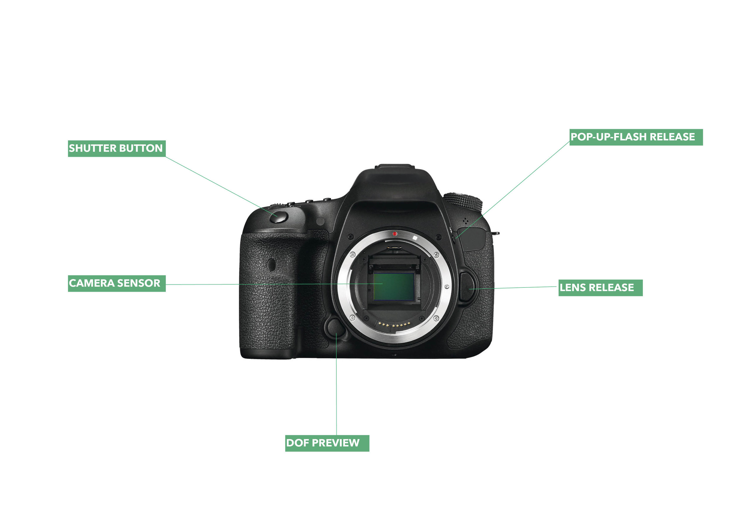 A photo of a DSLR camera without the lens attached, showing the camera sensor