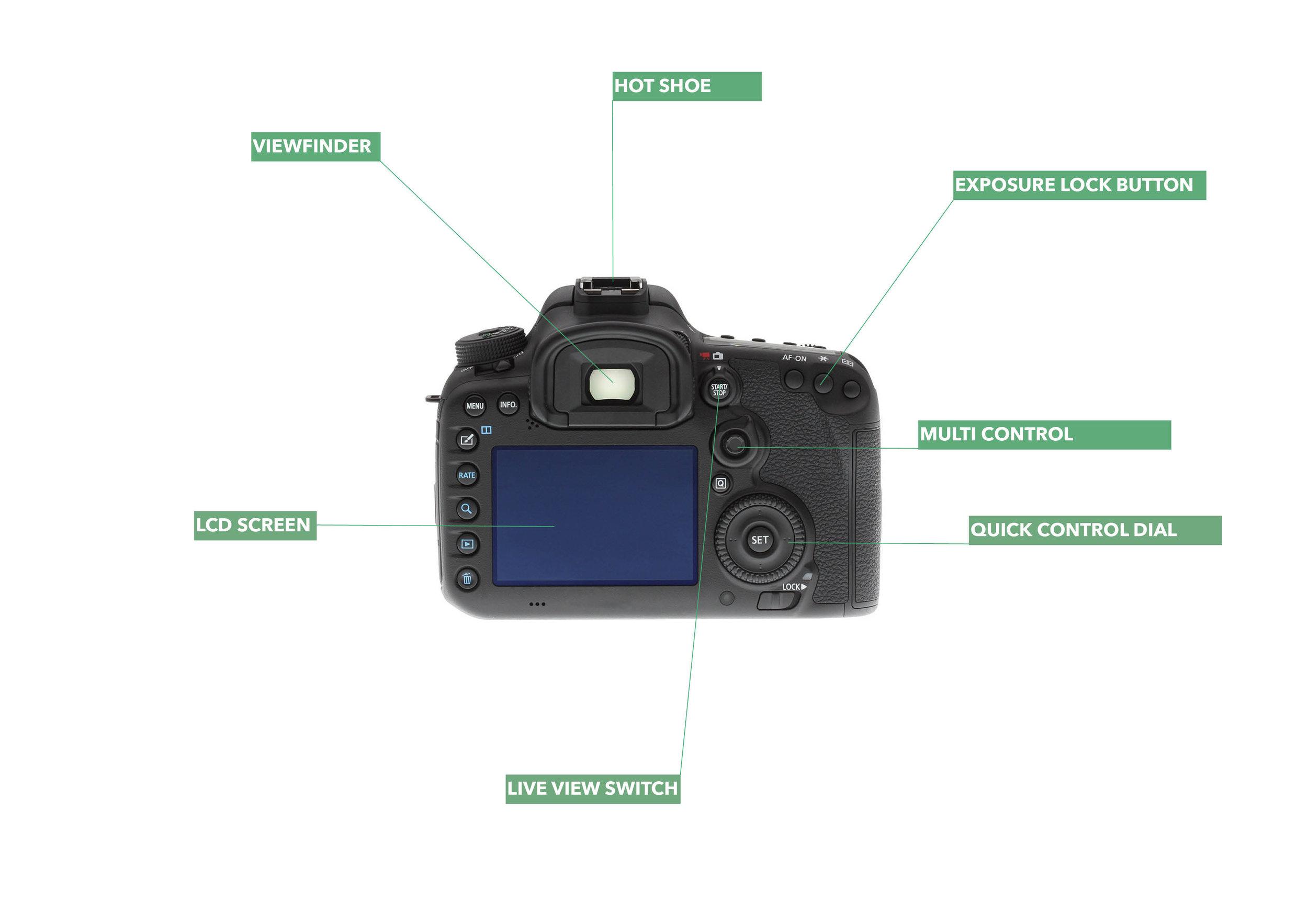 Back of a DSLR camera