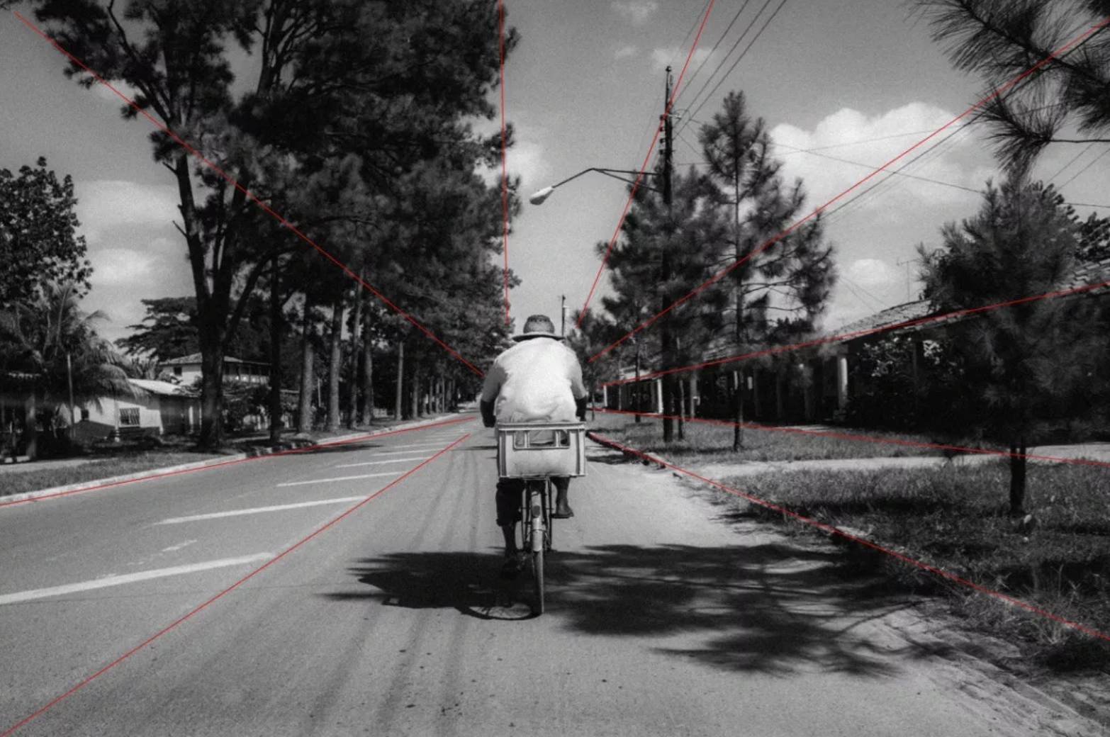 A photograph of a cyclist in the middle of the screen with many leading lines pointing towards him.