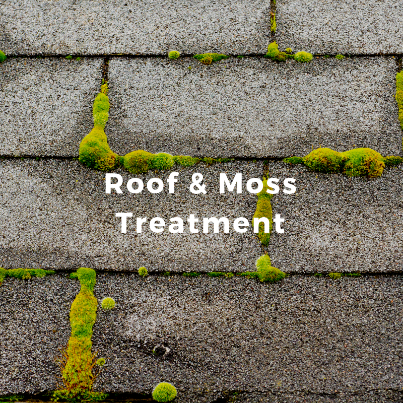Our proprietary solution is a safe and effective way to treat roof moss without causing unnecessary damage.   Learn More