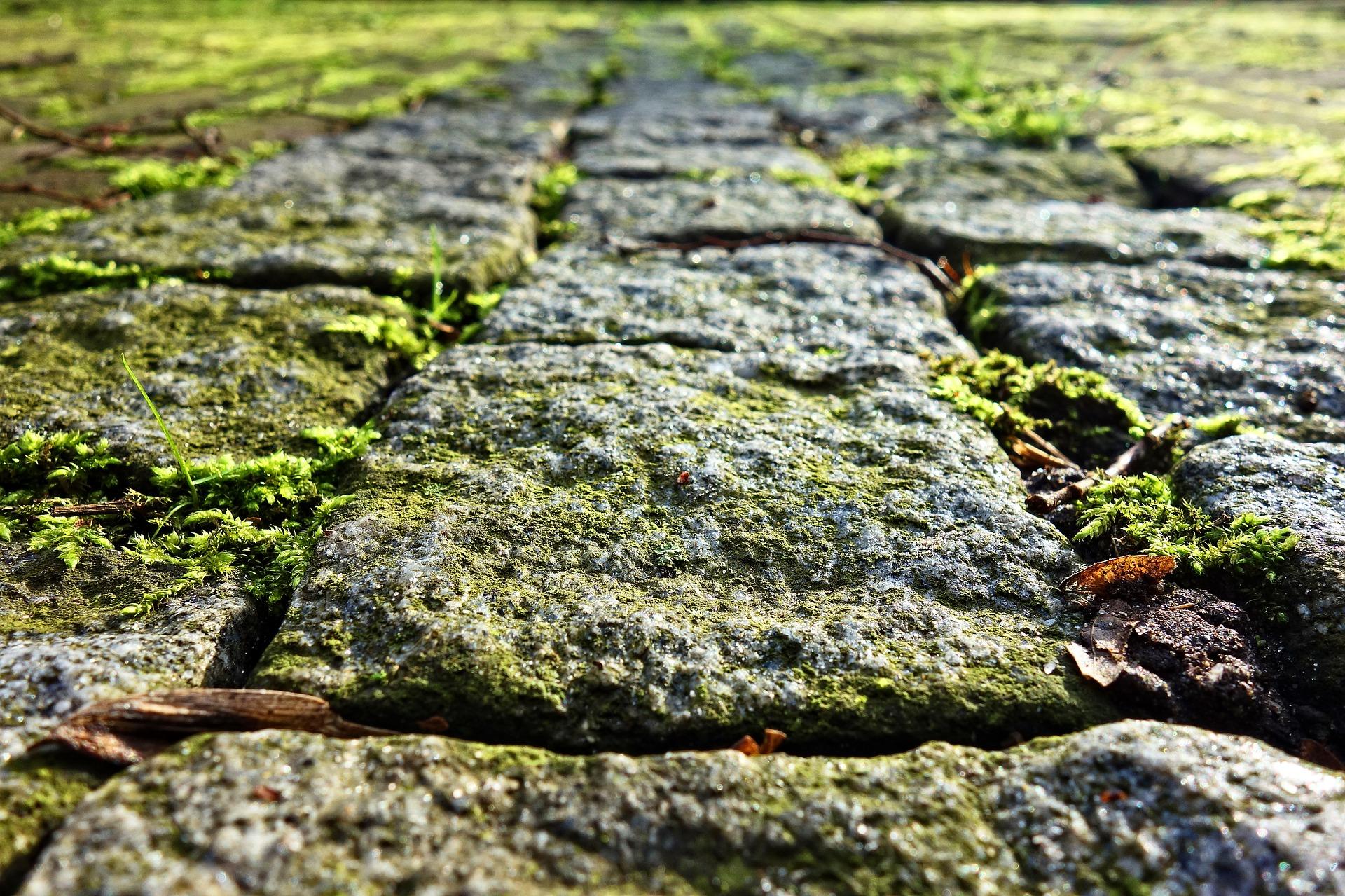 cobble-stone-3097749_1920.jpg