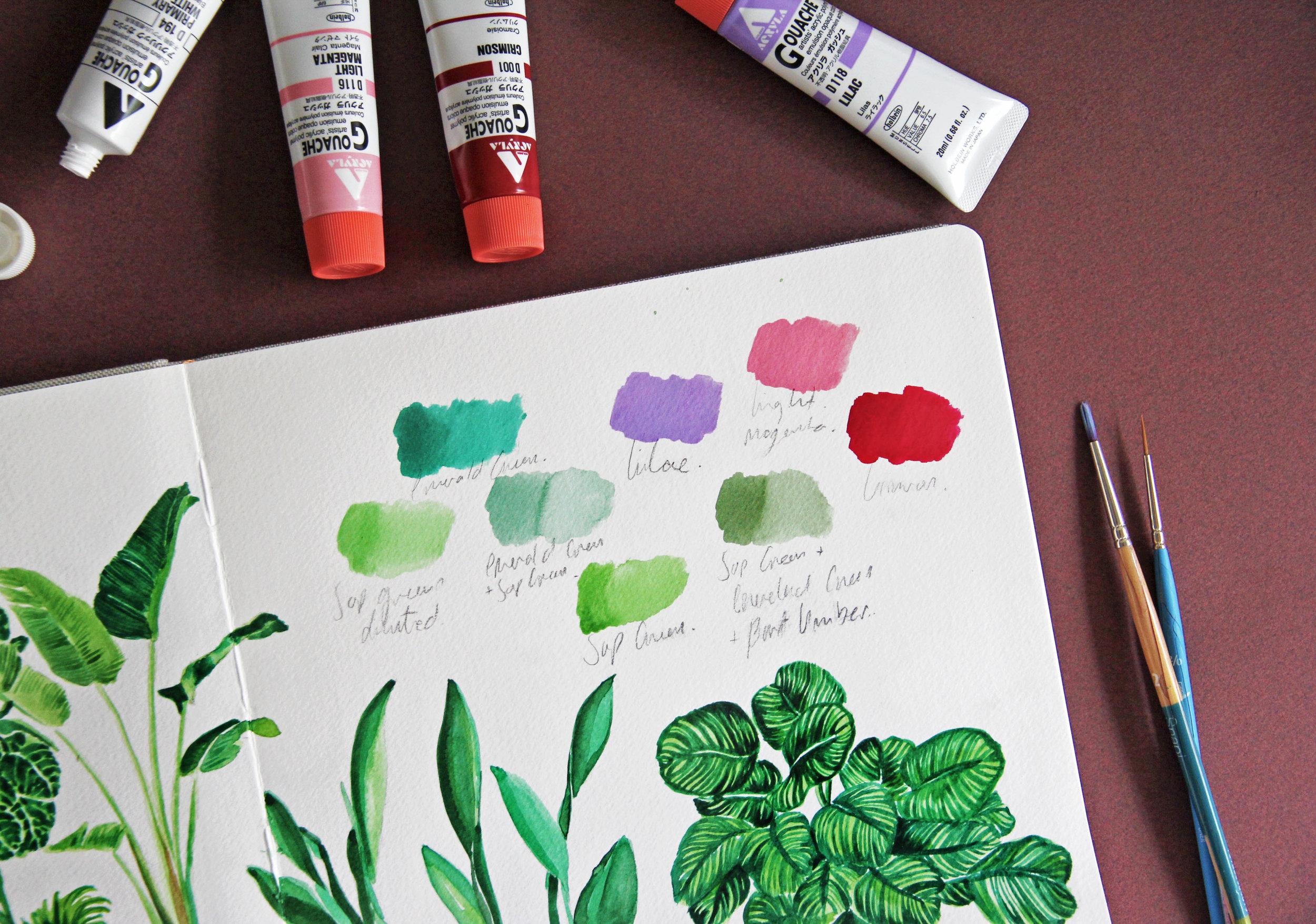 Plants Artwork-6.jpg