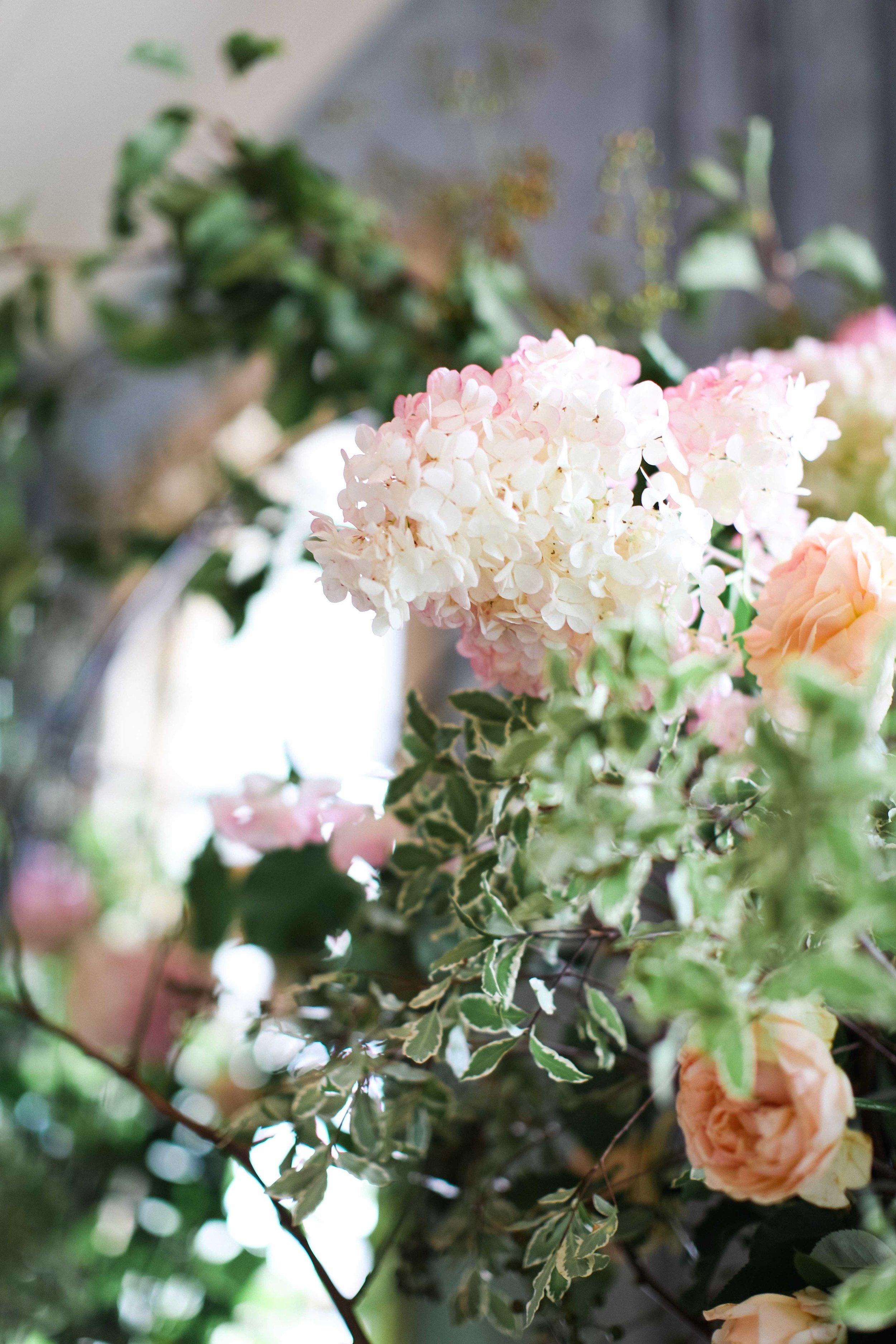 AmeliaClairePhotography_themelbournehotel-1-25.jpeg