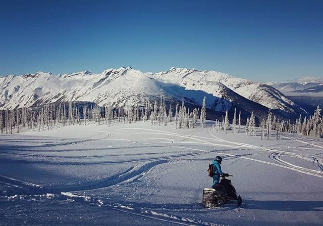 Plenty of reasons to visit Revelstoke! This is just one of them, even if you're new to sledding! :)