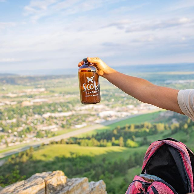 Happy first day of July y'all! THIS is the season for backyard bonfires, camping trips, long afternoons by the lake, and great hikes 🌸👩‍🌾🌻⛺️ We love to pack some craft kombucha for a refreshment on top of the mountain. What's all in your hiking backpack? . . . Photo by: @_lalaliv 💕 @natein0 @jaluise1 @clarissa_mae_ @gracegoehring  #refresh #letsscobi #itsjuly #summer #hiking #outdoors #camping #spearfishsouthdakota #enjoy #backpacking