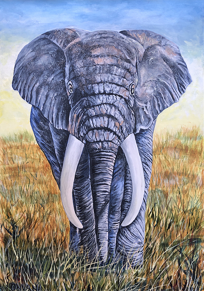 Onvani-Lisa-EL-ELEPHANT-1.jpg
