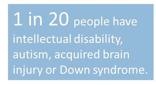 Statistic: 1 in 20 people have intellectual disability, autism, acquired brain injury or Down syndrome.