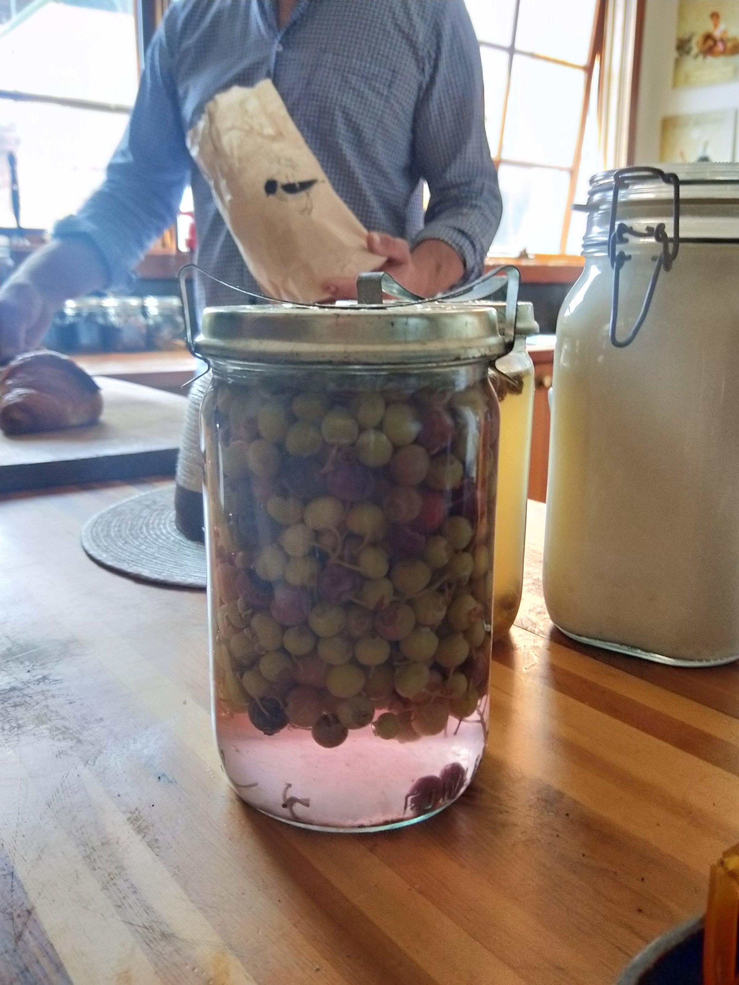 Lacto Gooseberries