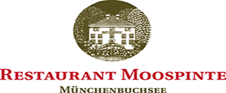Logo Moospinte.png