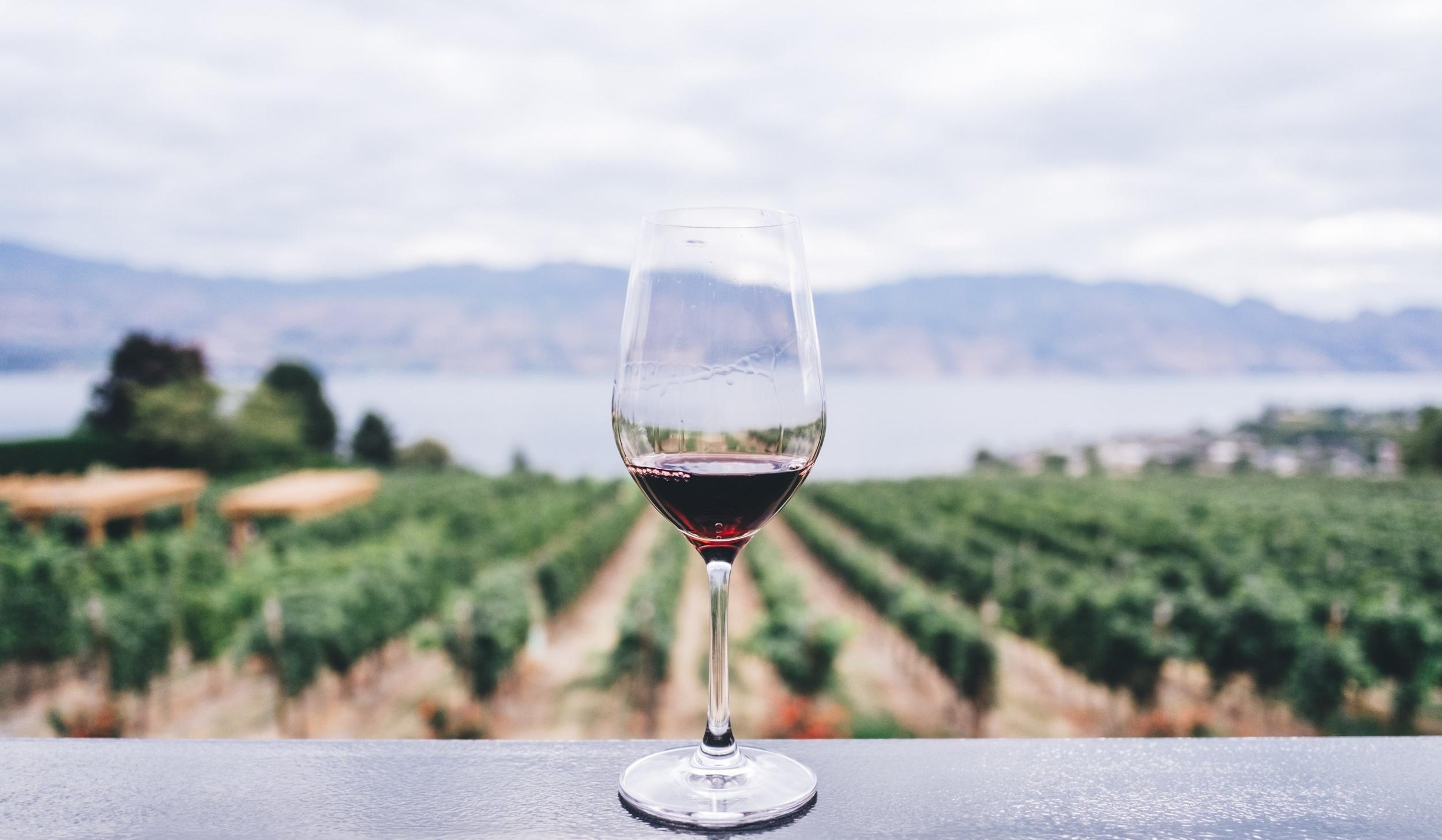 the-wine-trust-2.jpg