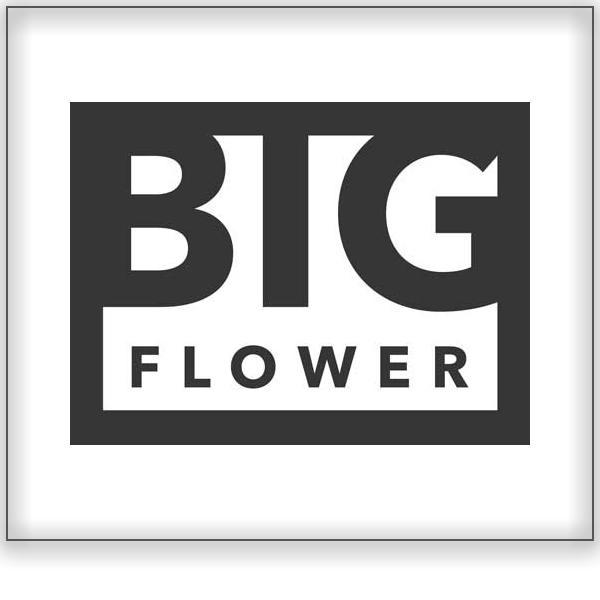 Big Flower | Botanica<a href=/big-flower>Stellenbosch, South Africa ➤</a>