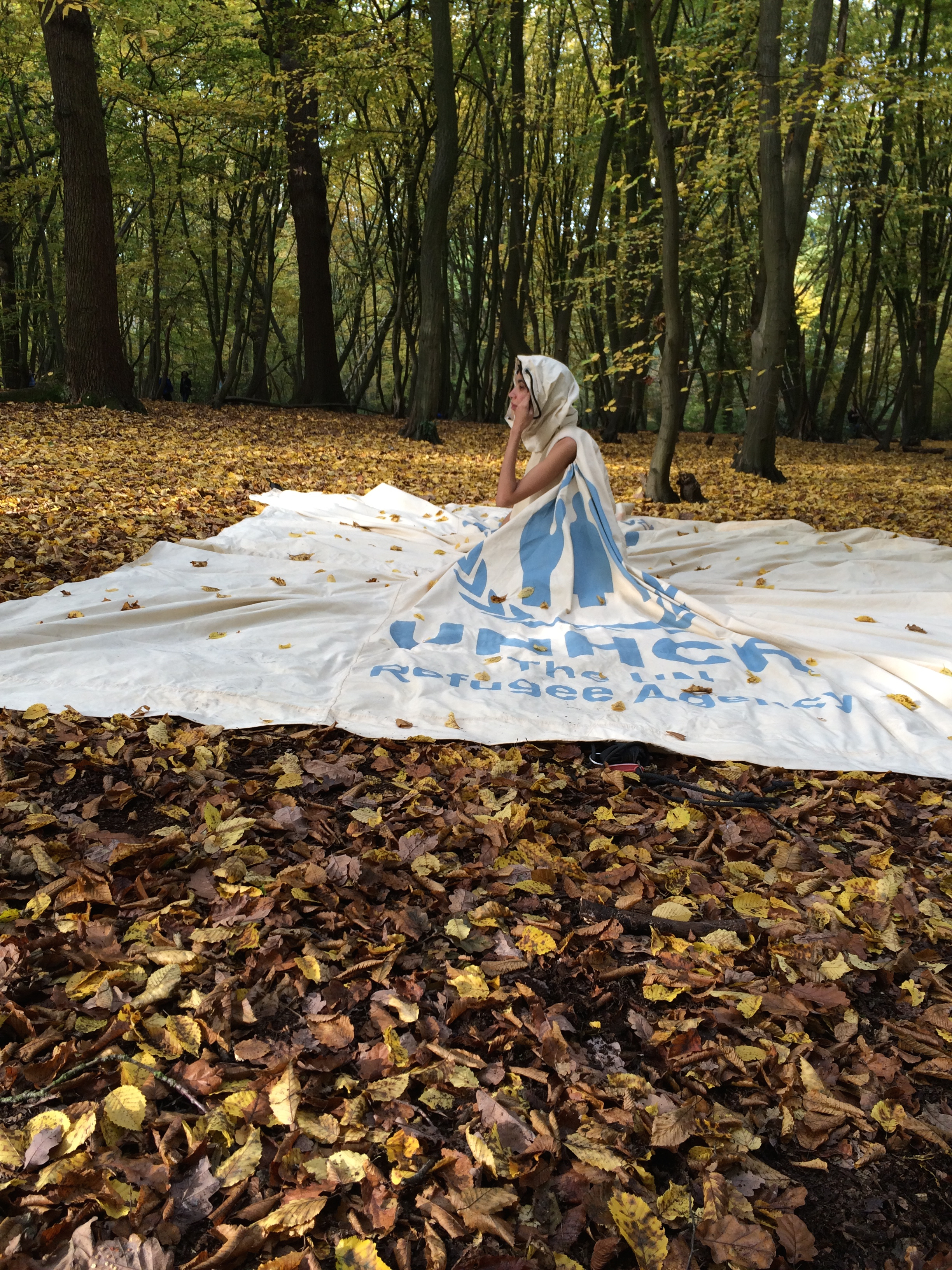 Dress in Cold Fall Woods