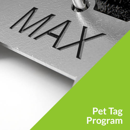 pet-tag-program-square.jpg