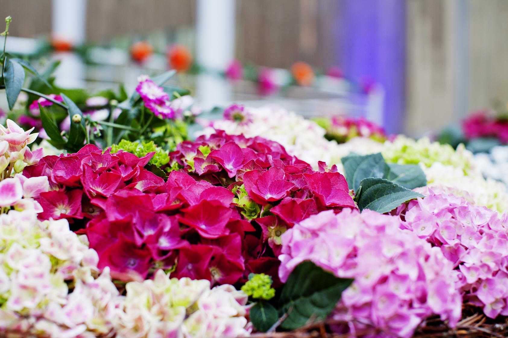 Tjuvholmen_blomsterdekor2.jpg