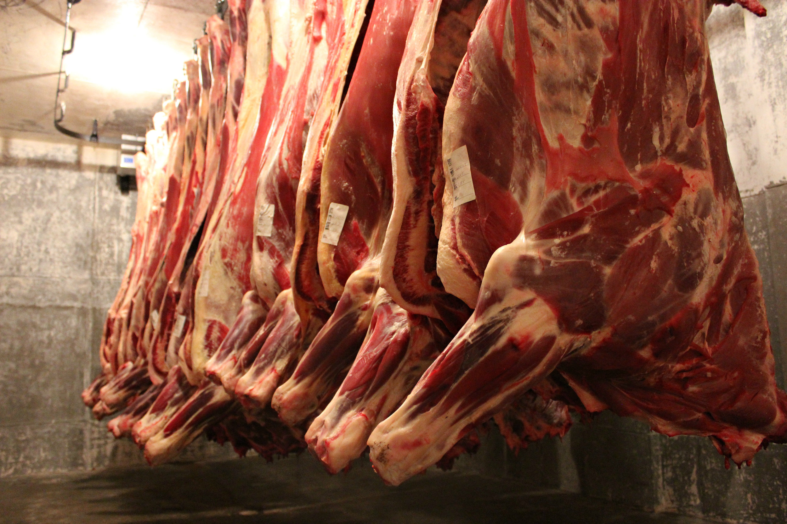Custom vs usda - Custom processing is only for meat that you wish to eat at home and is not for sale. USDA-inspected processing is for resale. You cannot do custom processing and sell to others. The cut forms are available below. You can select your cuts or have us help guide you through what would be a possible harvest.
