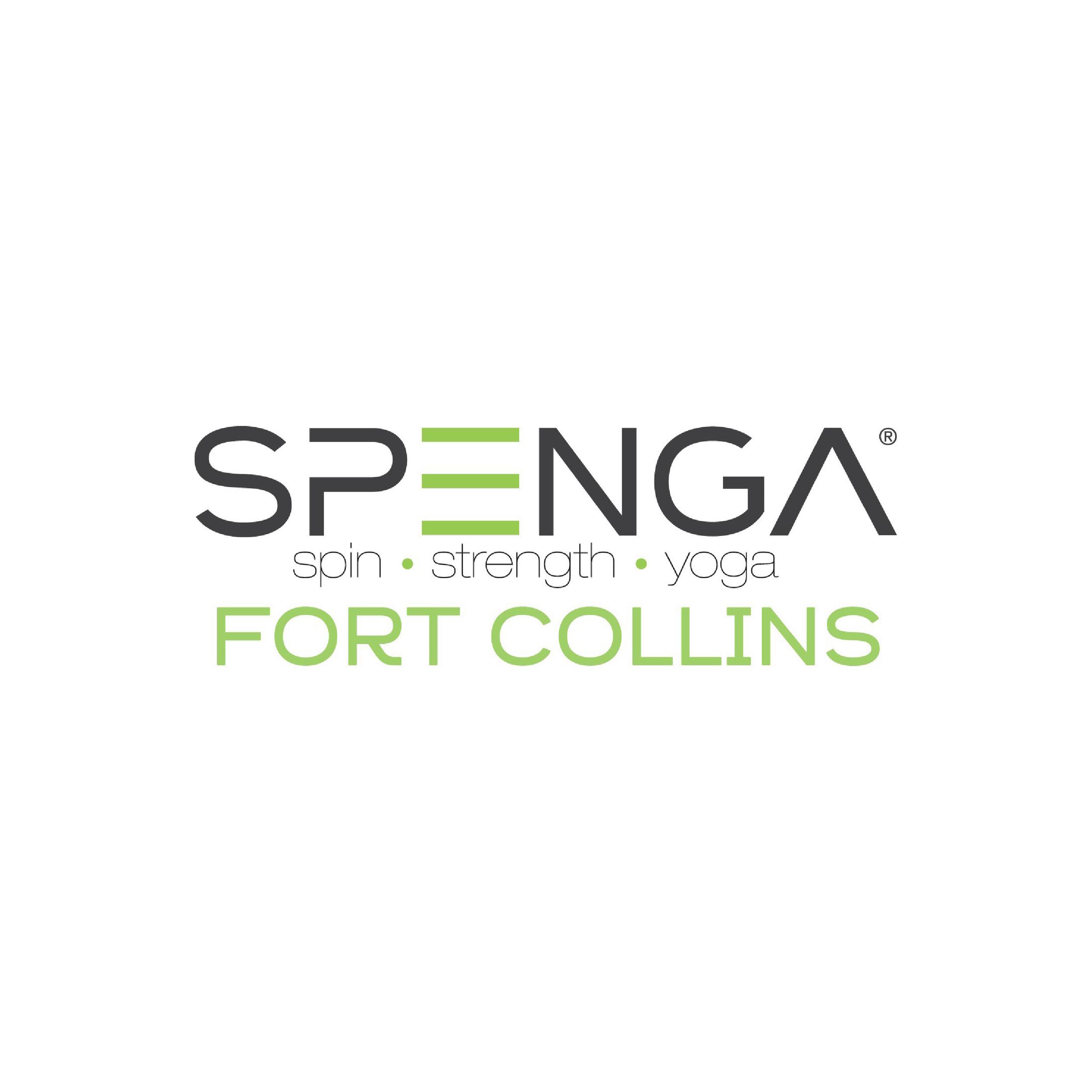 SPENGA II-01.png
