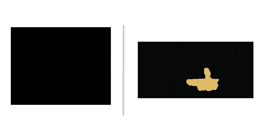 Facette Logo.png