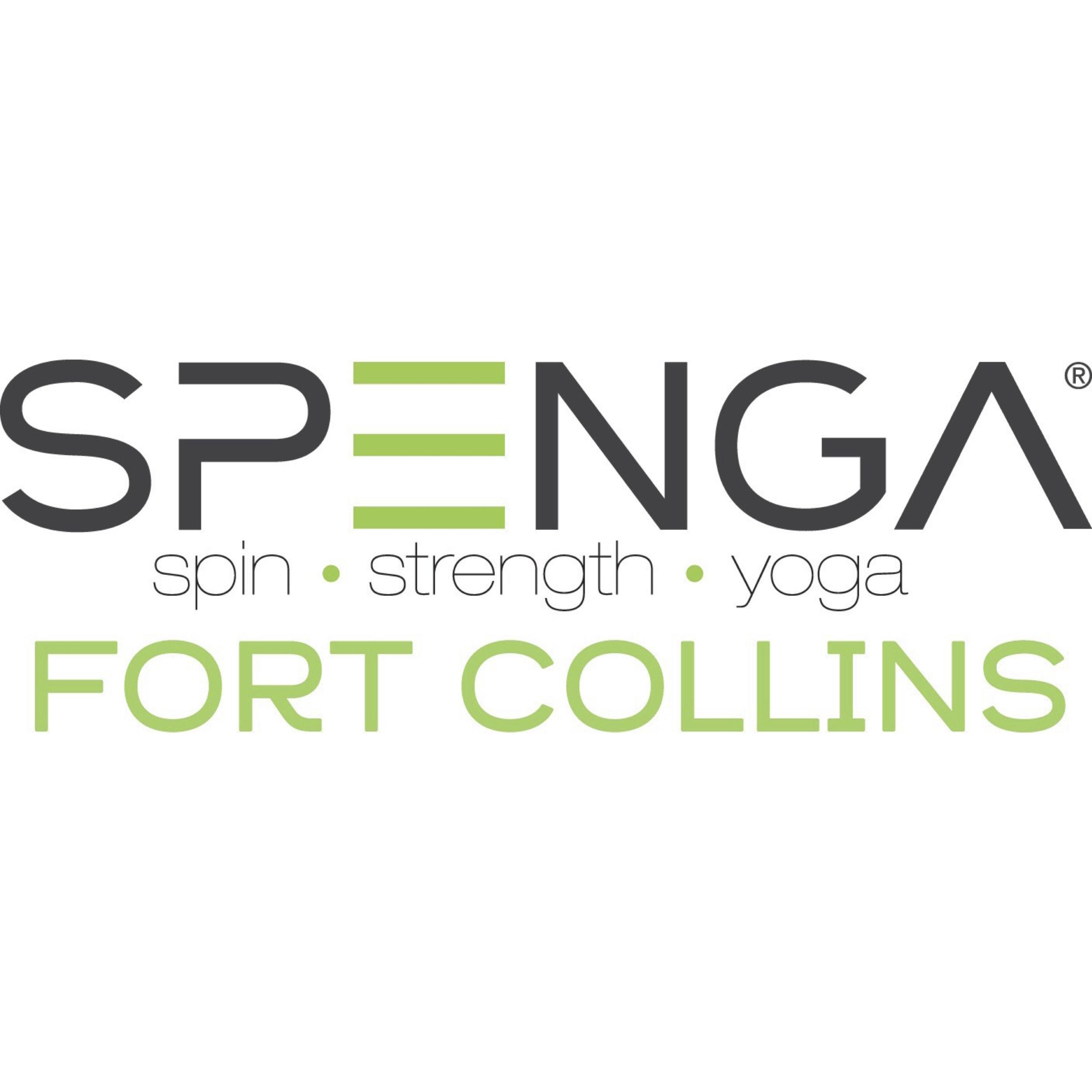 SPENGA II png.png