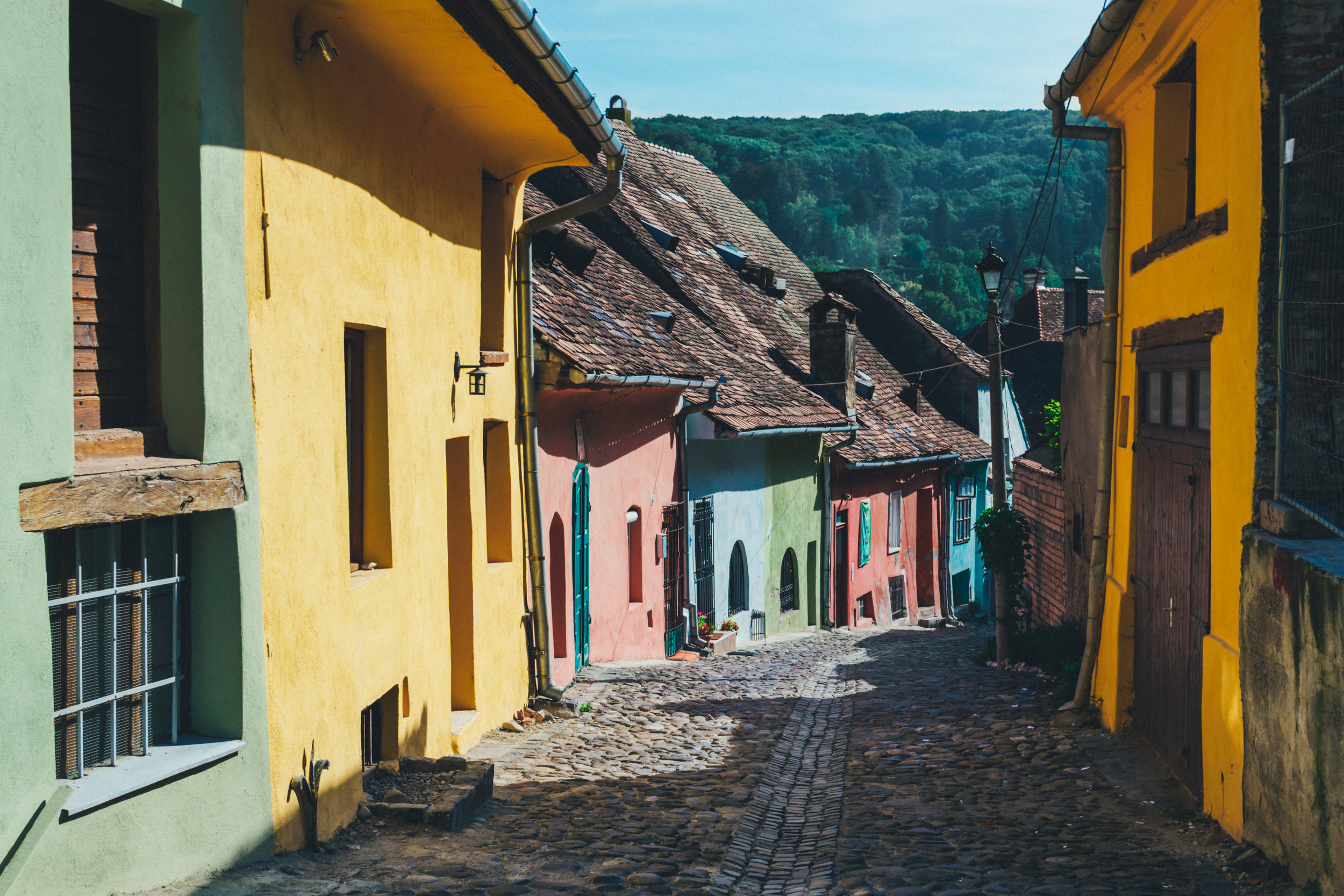 photo by:  freestocks.org