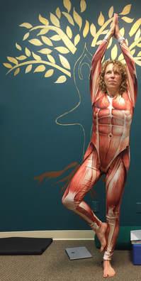 Anatomy training