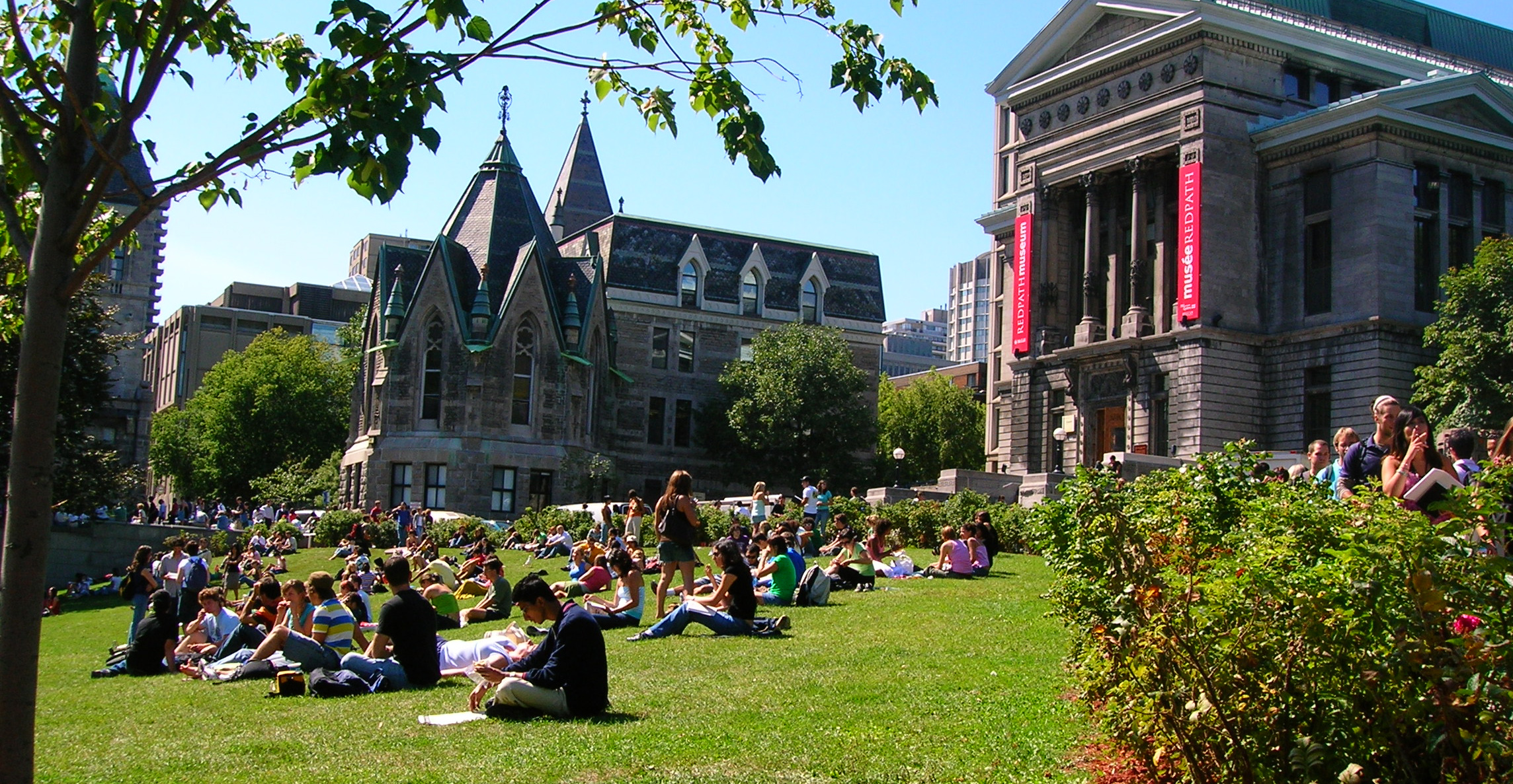 College Campus__.jpg