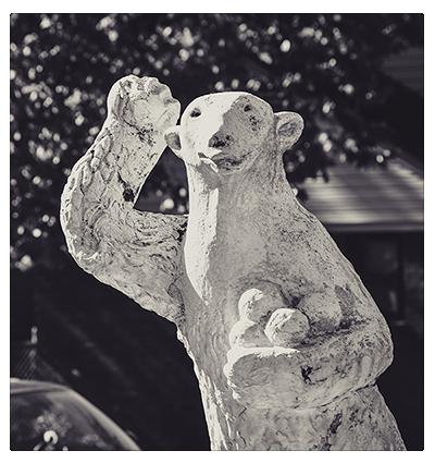 polar bears road.jpg