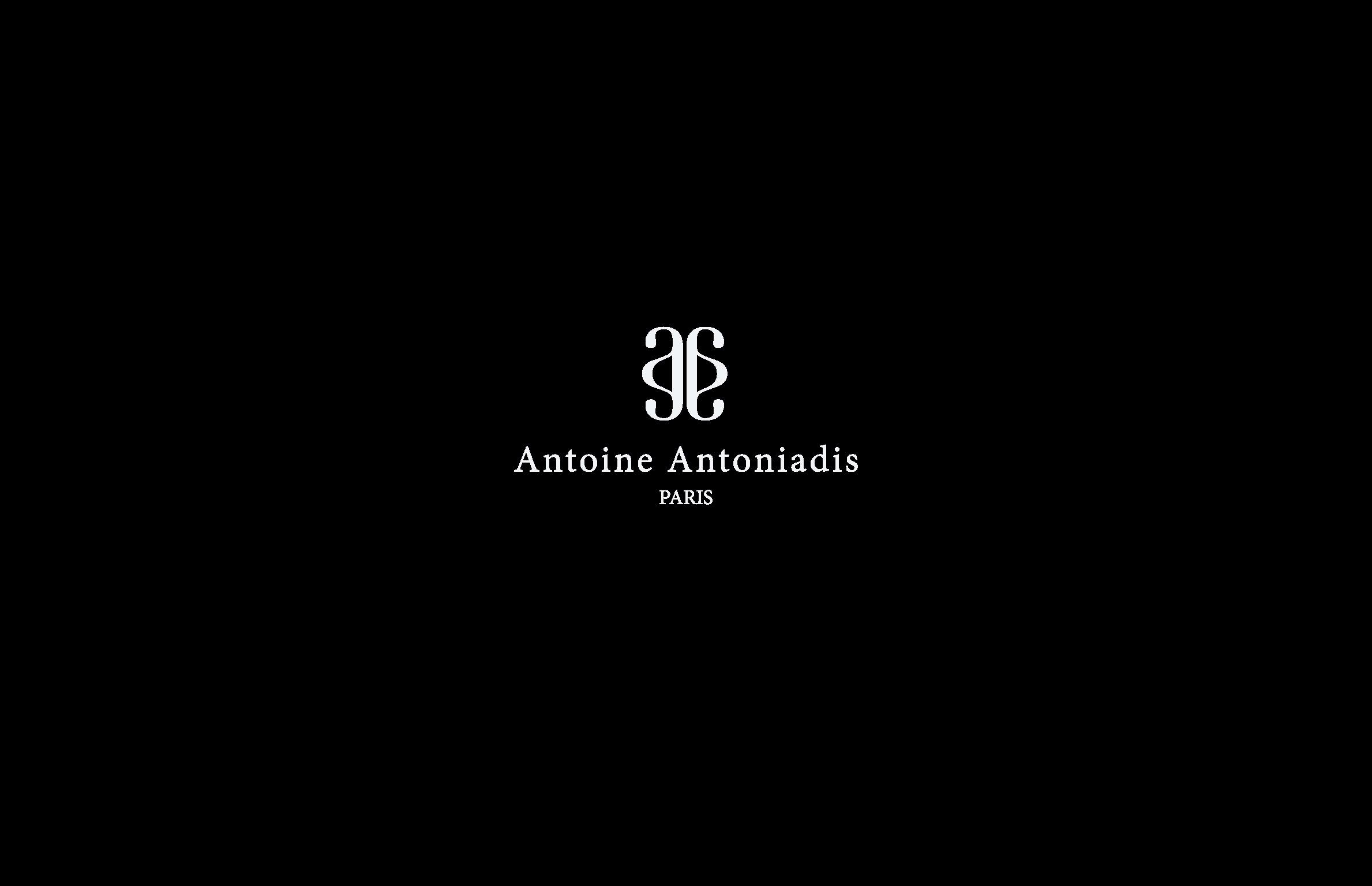 Antoine Antoniadis 1_Page_05.jpg
