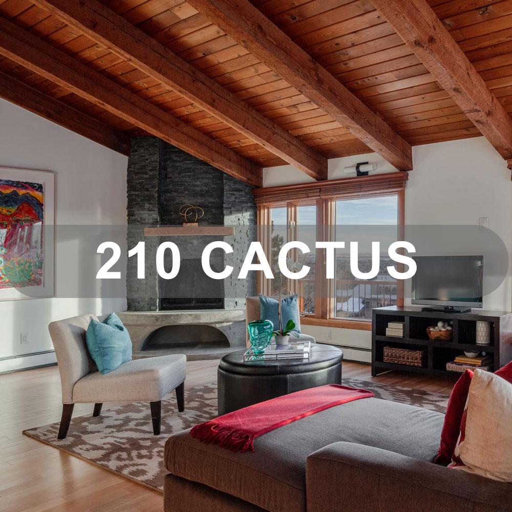 Firuzeh-Saidi-Solds-210-Cactus.jpg