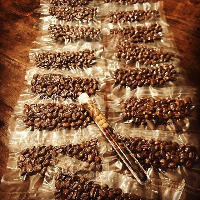 So many samples!!! Super excited to cup these direct trade Nicaraguan coffees from @goldmtncoffee . We will be cupping everything from now on with two waters: one alkaline/mineralized and one nyc tap, just to get the full range of flavors our wholesale customers will experience. Results tomorrow!