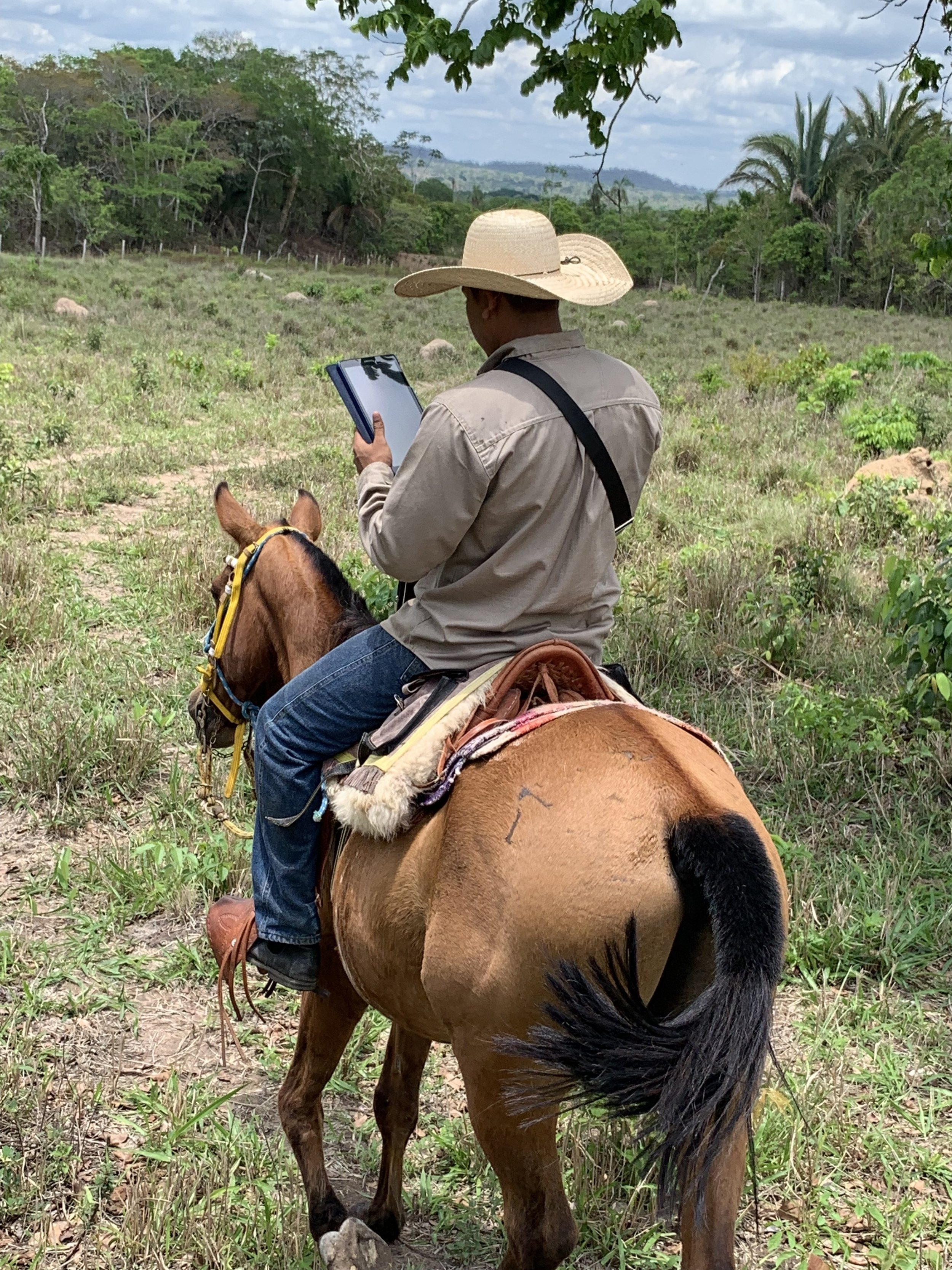 Digital ranching - With a team of experienced ranchers, professional management and best-in-class digital tools - La Pradera is setting the standard.