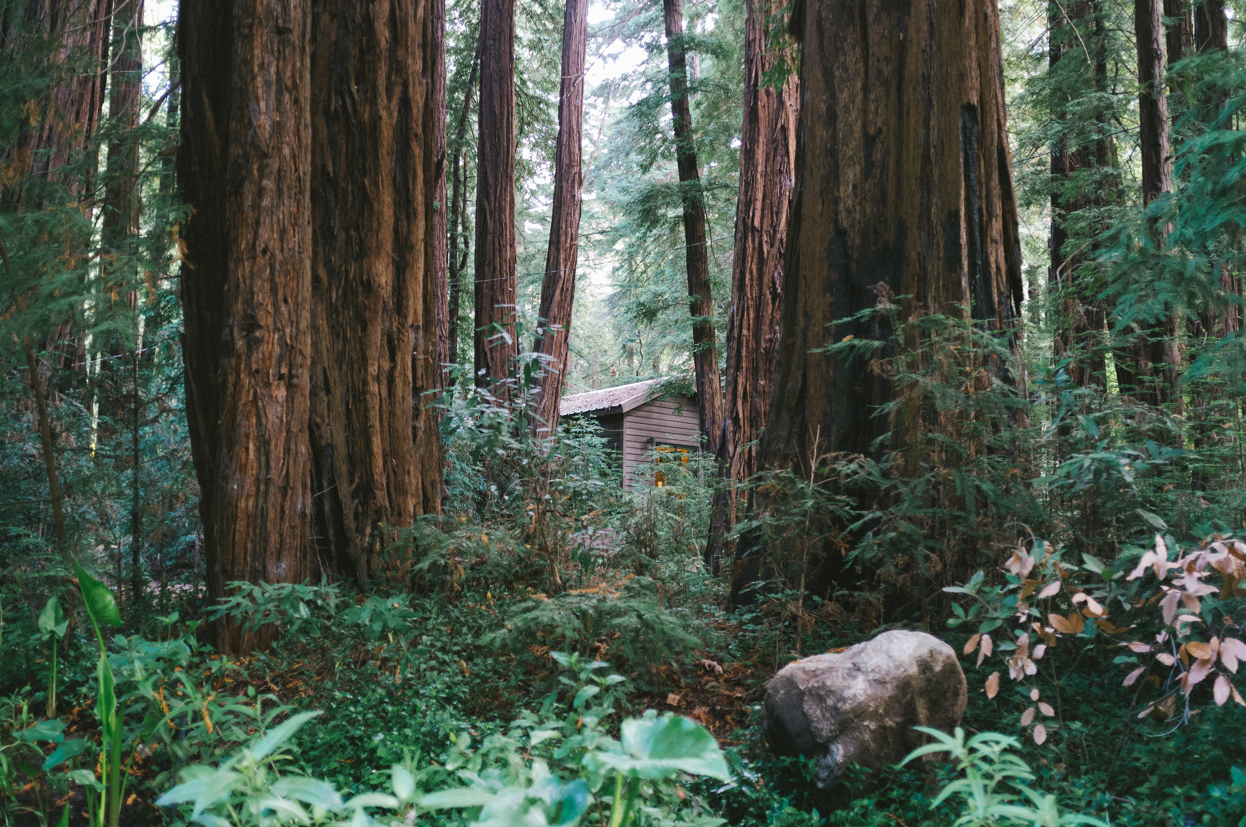 Northern California (Camping) - This is for my friends who prefer to stay grounded rather than afloat. A lovely retreat minus the boat.Camp with us for a week at Highland Lakes. Hike the trails to glaciers and valleys only accessible by foot. Yoga and meditation is breathtaking atop Folger Peak. This is one of my favorite places in the world as I have been coming here since before I learned to walk. If you haven't seen this landscape, it's an absolute must.Click to see pictures…