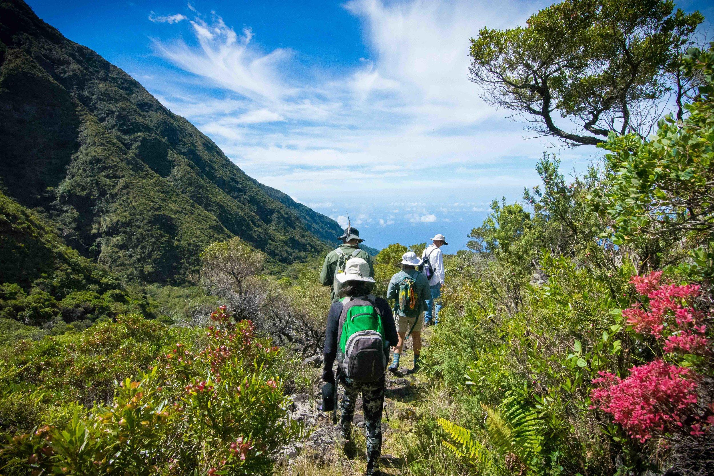 Friends of Haleakala.jpg