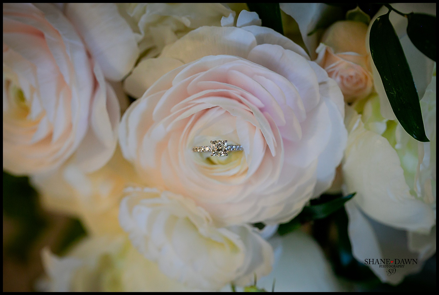 flowers with ring