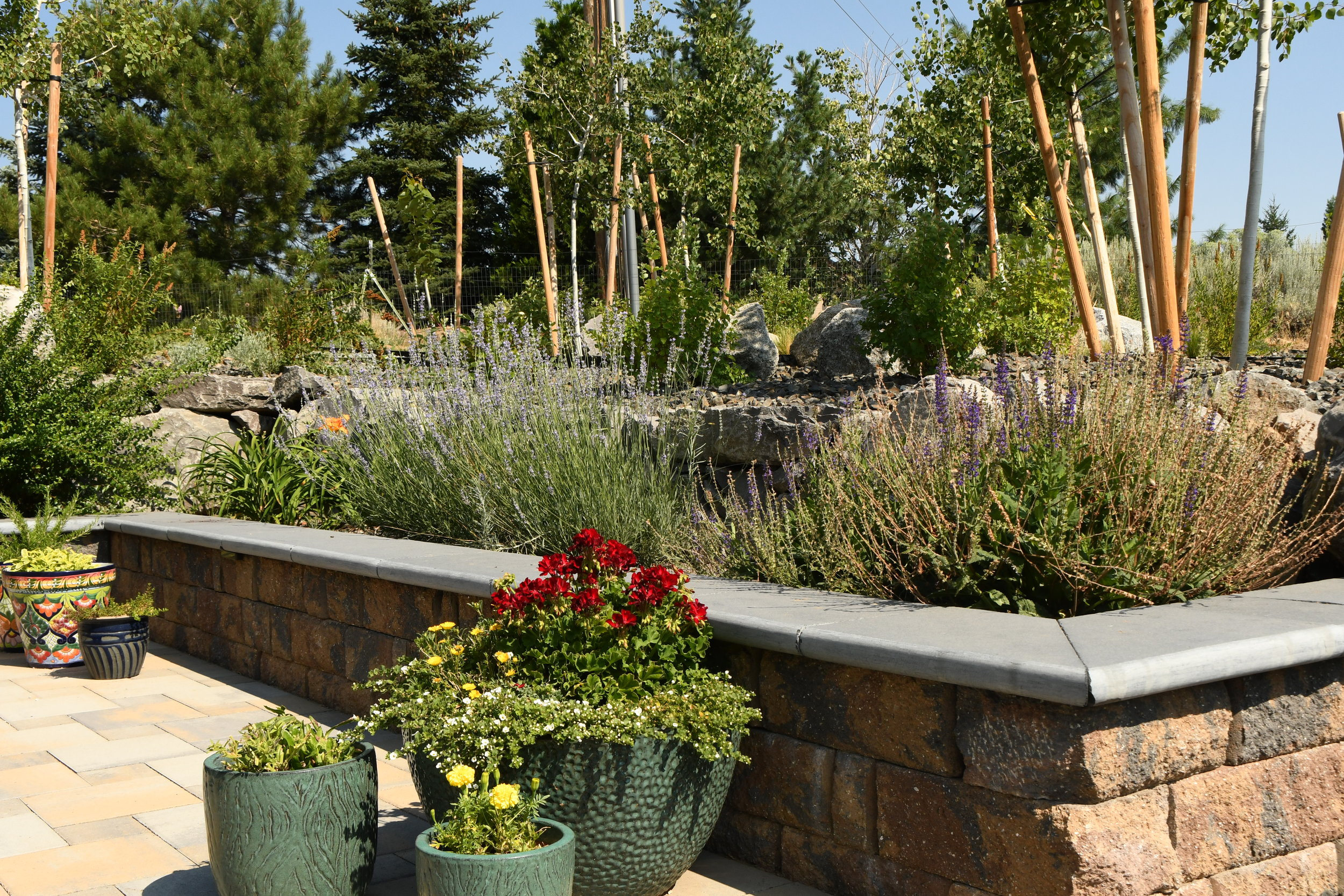 3 Things Landscape Contractors Are Doing to Add Value to Newcastle, CA, Homes