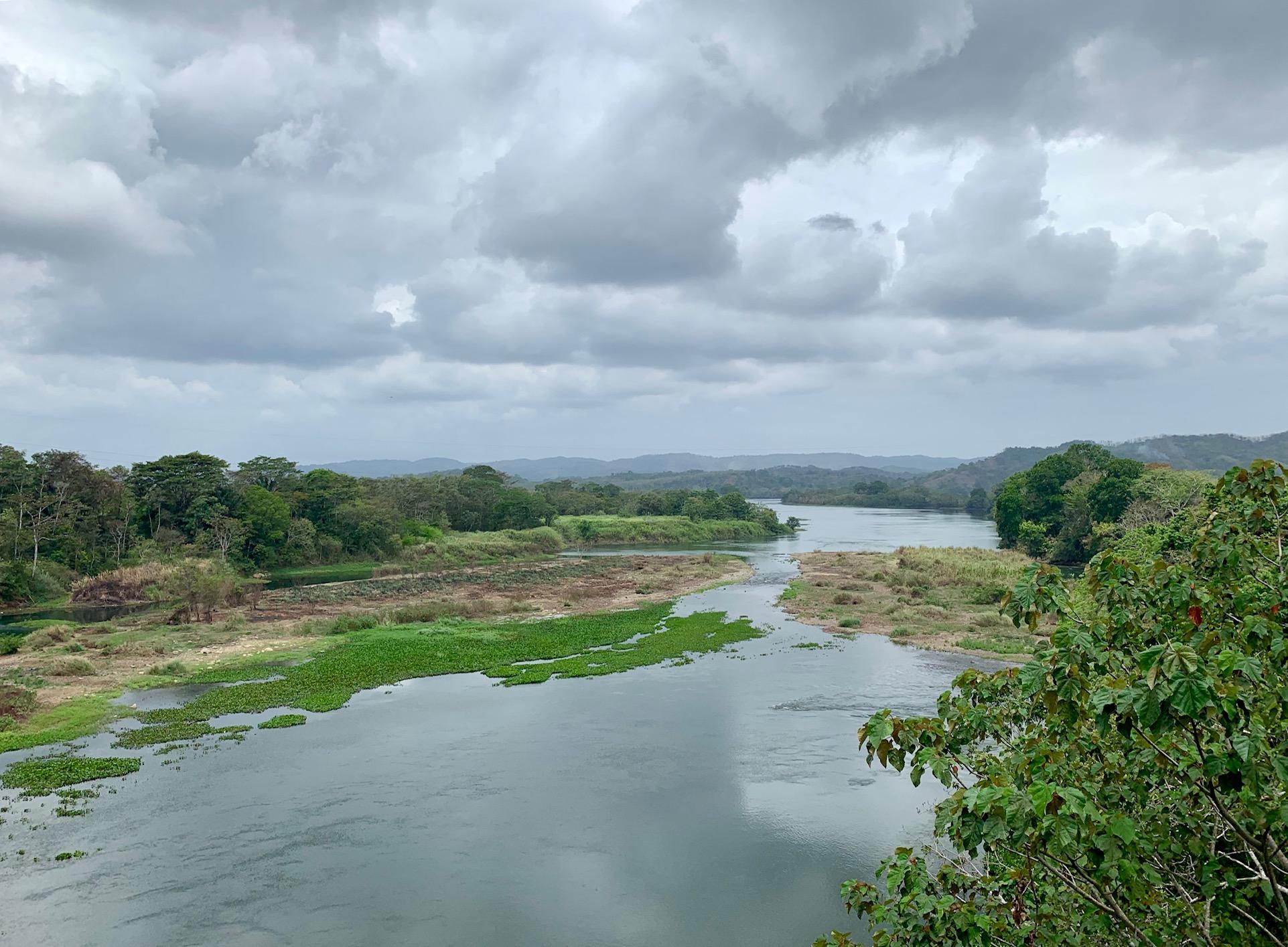 Panama river.jpeg