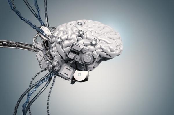 nervous system training