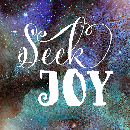 seek joy.png