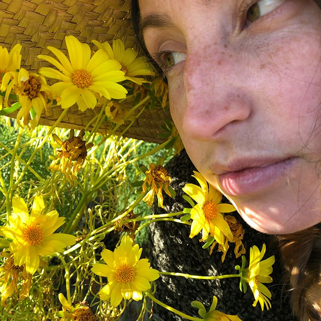 It'll be a short spring unless we get some more rain🤞. In the meantime, go enjoy the flowers. @alinahardin checking out the giant coreopsis bloom. 2nd pic is UV-light bee vision of the same flower. There may be more than meets the eye if you look close enough 🤭. #craigpburrows
