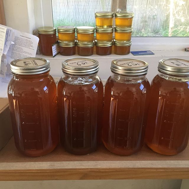 Last year's summer honey flowed through July. Looking forward to the spring now that we got a bit of 🌧.